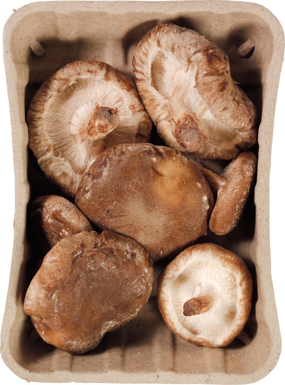 Biologische Proef Shiitake 150 gr